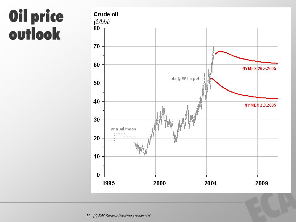 13 (C) 2005. Economic Consulting Associates Ltd Oil price outlook