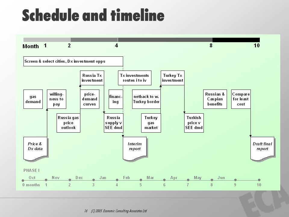16 (C) 2005. Economic Consulting Associates Ltd Schedule and timeline