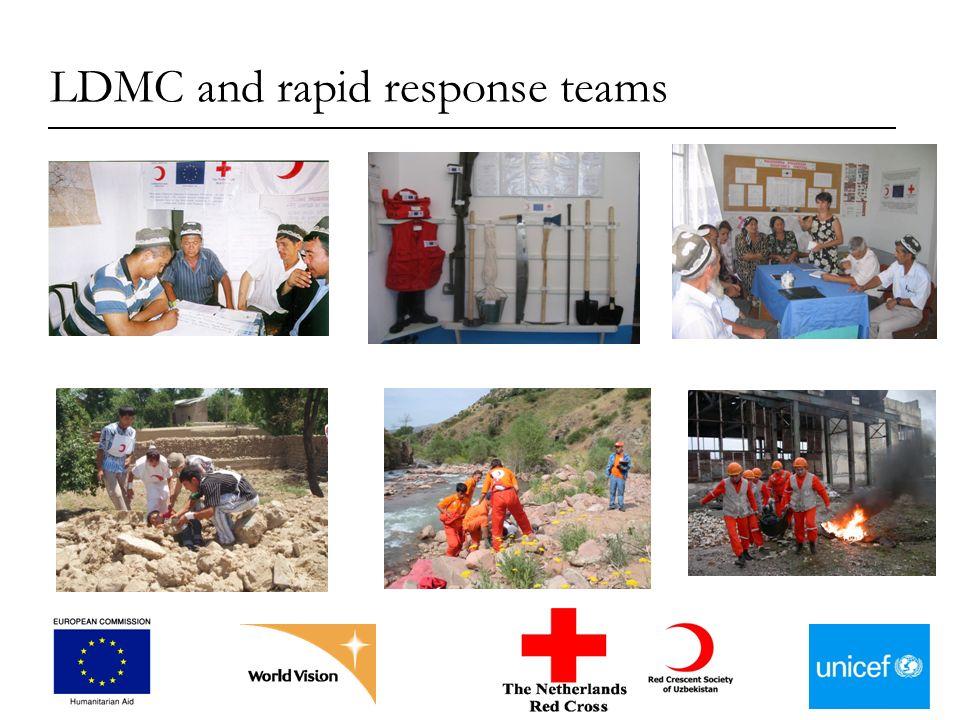LDMC and rapid response teams