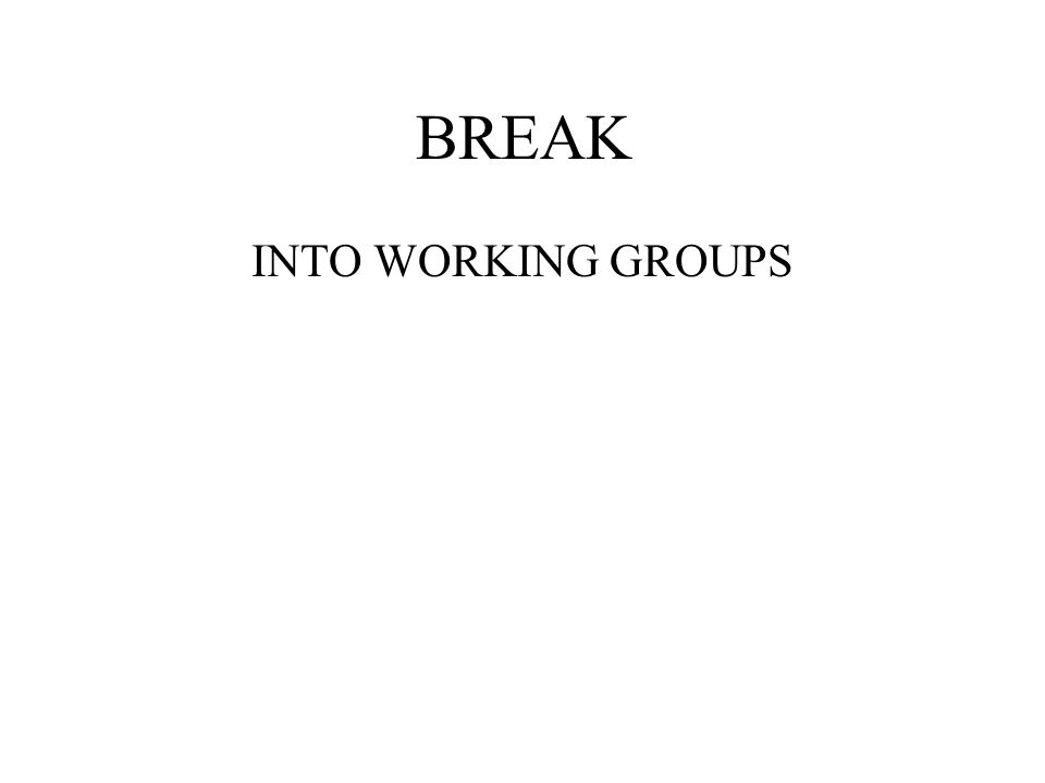 BREAK INTO WORKING GROUPS