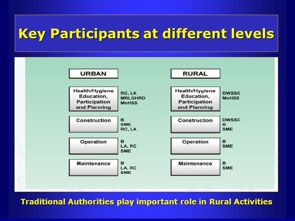 Key Participants at different levels Traditional Authorities play important role in Rural Activities