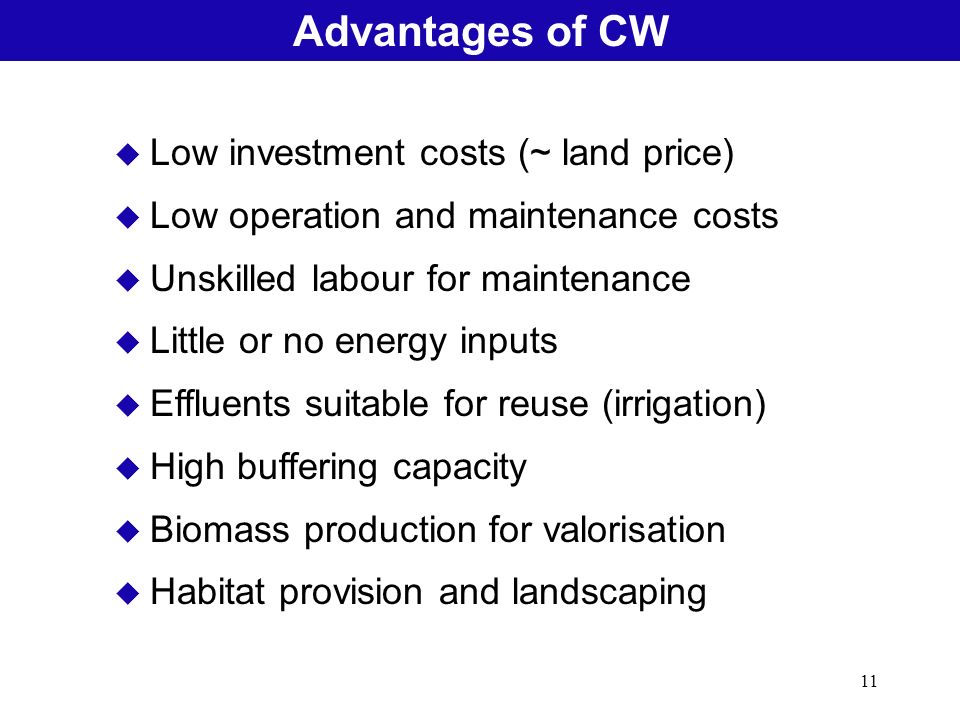 11 Natural Treatment SystemsAdvantages of CW u Low investment costs (~ land price) u Low operation and maintenance costs u Unskilled labour for mainte