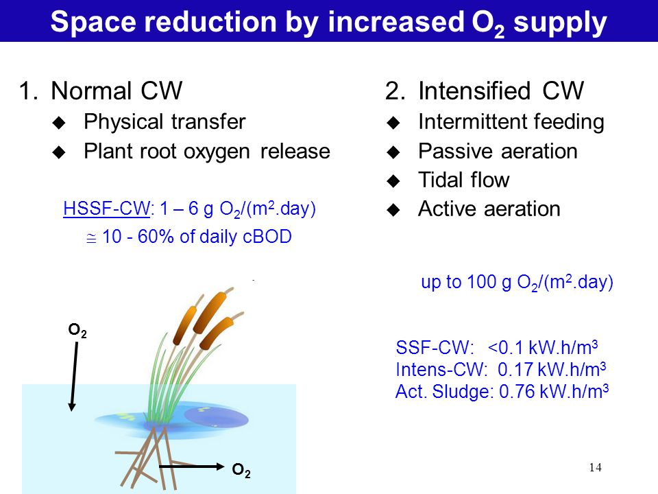 14 Natural Treatment SystemsSpace reduction by increased O 2 supply 1.Normal CW u Physical transfer u Plant root oxygen release HSSF-CW: 1 – 6 g O 2 /(m 2.day) % of daily cBOD 2.Intensified CW u Intermittent feeding u Passive aeration u Tidal flow u Active aeration up to 100 g O 2 /(m 2.day) SSF-CW: <0.1 kW.h/m 3 Intens-CW: 0.17 kW.h/m 3 Act.