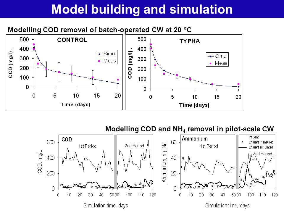 19 Natural Treatment SystemsModel building and simulation Modelling COD removal of batch-operated CW at 20 °C Modelling COD and NH 4 removal in pilot-