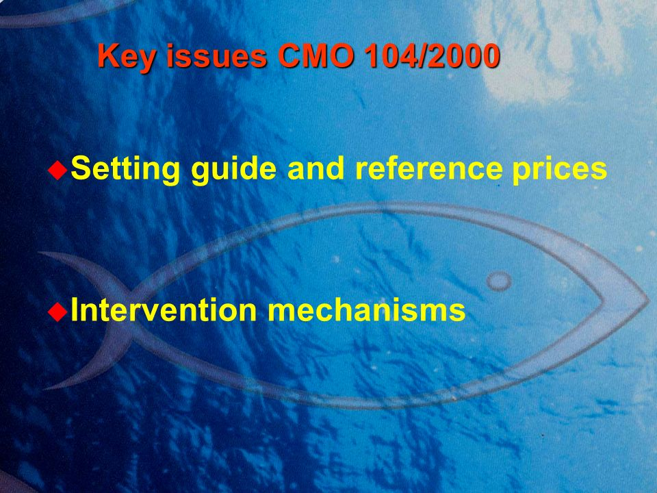 Key issues CMO 104/2000 Key issues CMO 104/2000 Setting guide and reference prices Intervention mechanisms