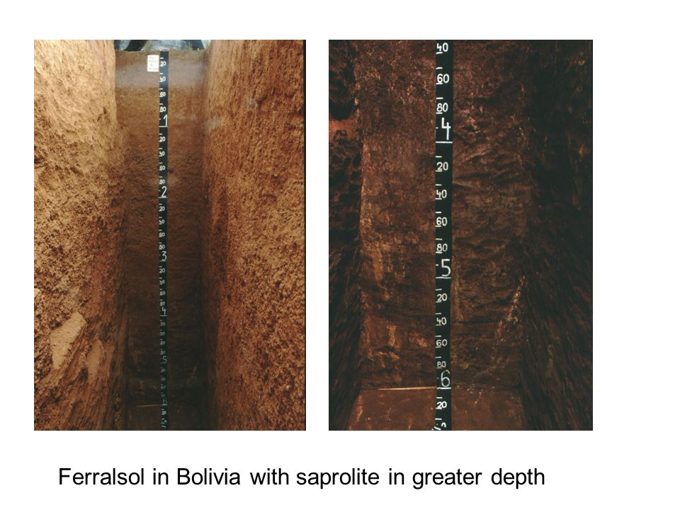 Ferralsol in Bolivia with saprolite in greater depth