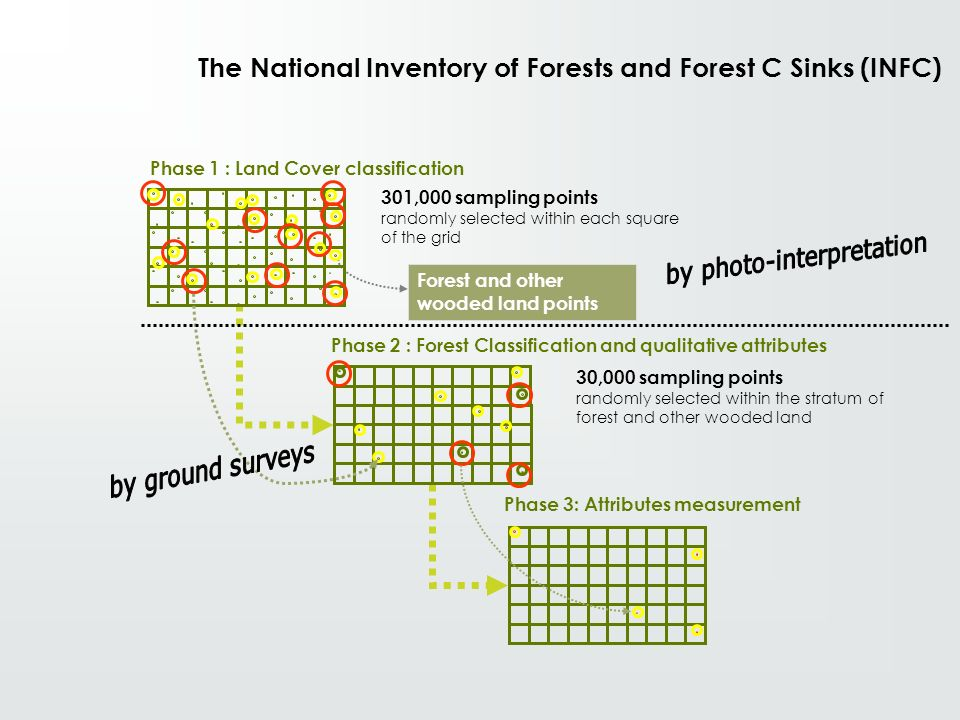 The National Inventory of Forests and Forest C Sinks (INFC)