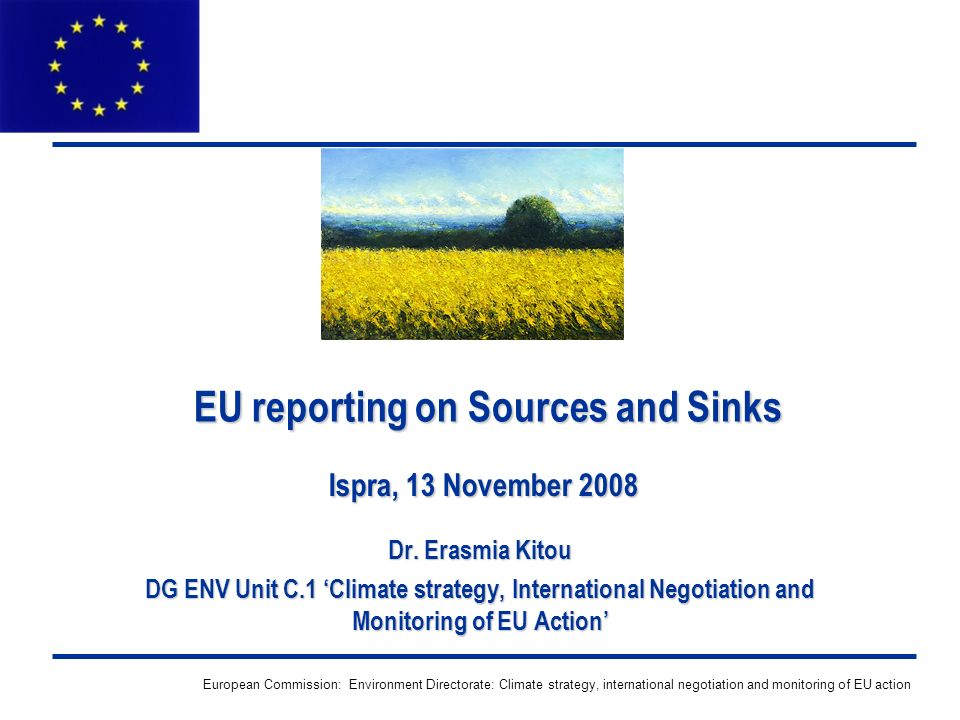 European Commission: Environment Directorate: Climate strategy, international negotiation and monitoring of EU action EU reporting on Sources and Sinks Dr.