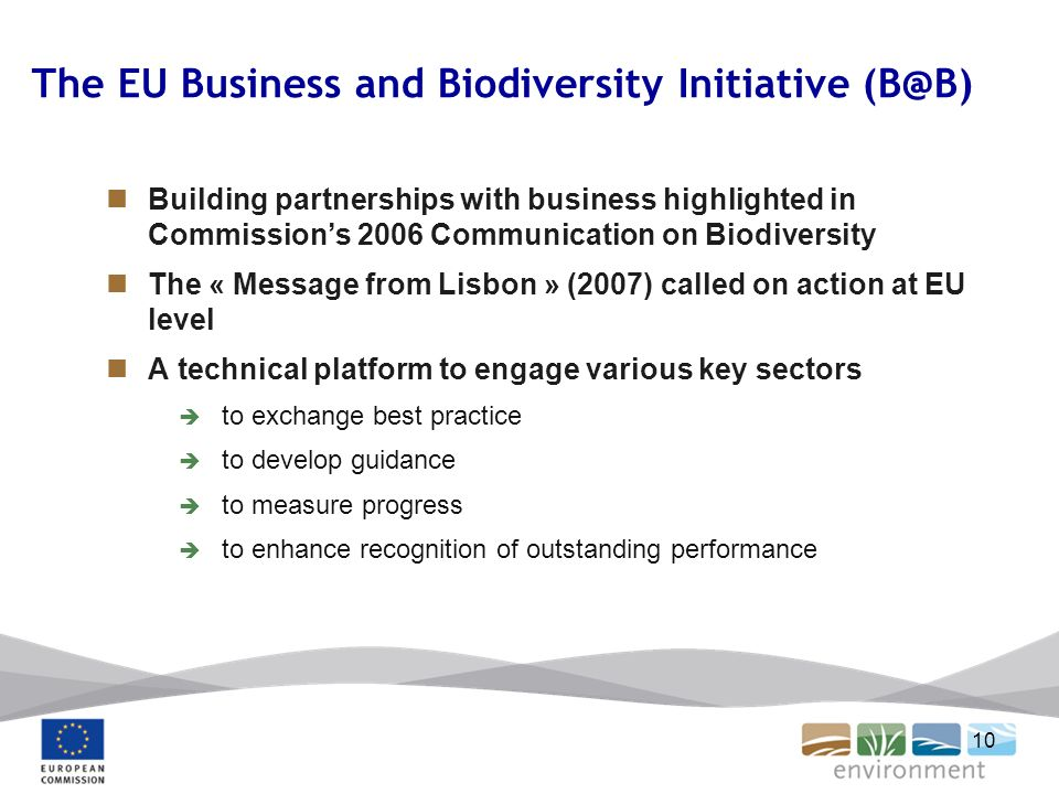 10 The EU Business and Biodiversity Initiative (B@B) Building partnerships with business highlighted in Commissions 2006 Communication on Biodiversity The « Message from Lisbon » (2007) called on action at EU level A technical platform to engage various key sectors to exchange best practice to develop guidance to measure progress to enhance recognition of outstanding performance