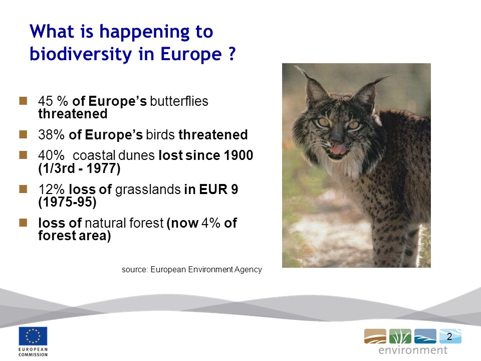 2 What is happening to biodiversity in Europe .