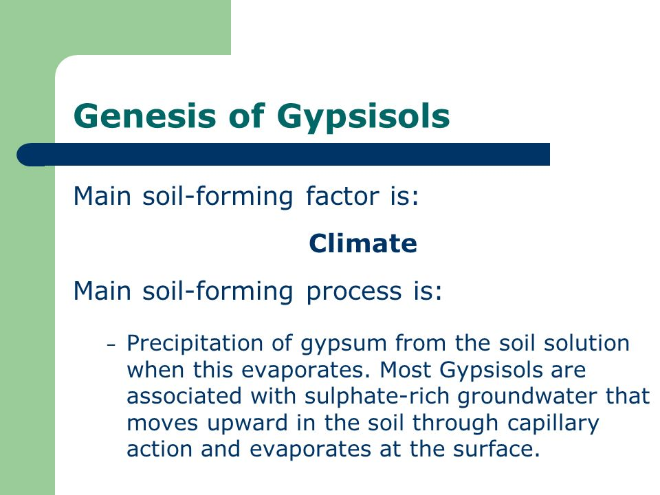 Genesis of Gypsisols Main soil-forming factor is: Climate Main soil-forming process is: – Precipitation of gypsum from the soil solution when this eva