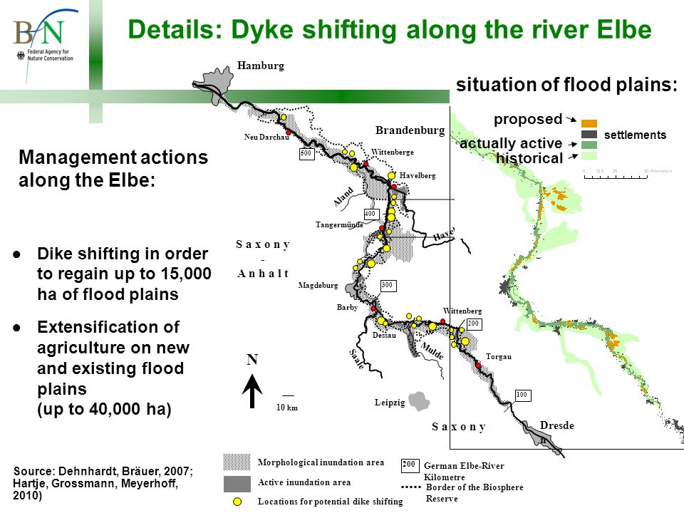 Management actions along the Elbe: Dike shifting in order to regain up to 15,000 ha of flood plains Extensification of agriculture on new and existing