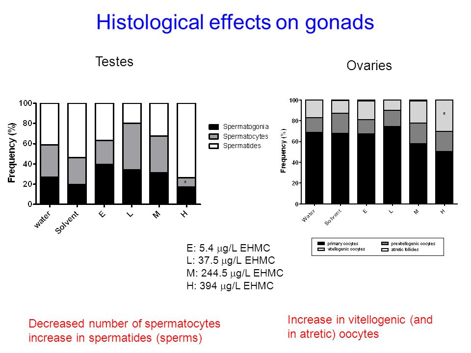 Histological effects on gonads Testes Decreased number of spermatocytes increase in spermatides (sperms) E: 5.4 g/L EHMC L: 37.5 g/L EHMC M: 244.5 g/L