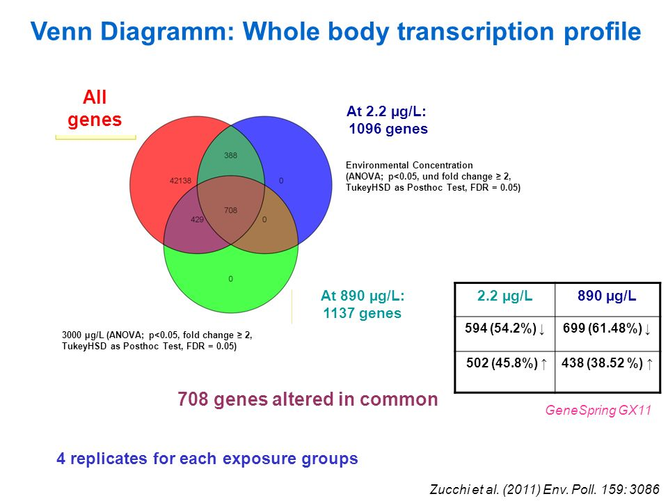 Venn Diagramm: Whole body transcription profile GeneSpring GX11 708 genes altered in common 2.2 µg/L890 µg/L 594 (54.2%) 699 (61.48%) 502 (45.8%) 438