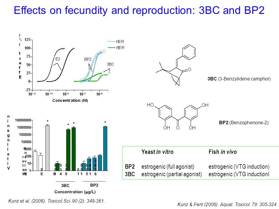 3BC (3-Benzylidene camphor) BP2 (Benzophenone-2) Kunz et al. (2006). Toxicol.Sci. 90 (2): 349-361. Yeast in vitro Fish in vivo BP2 estrogenic (full ag