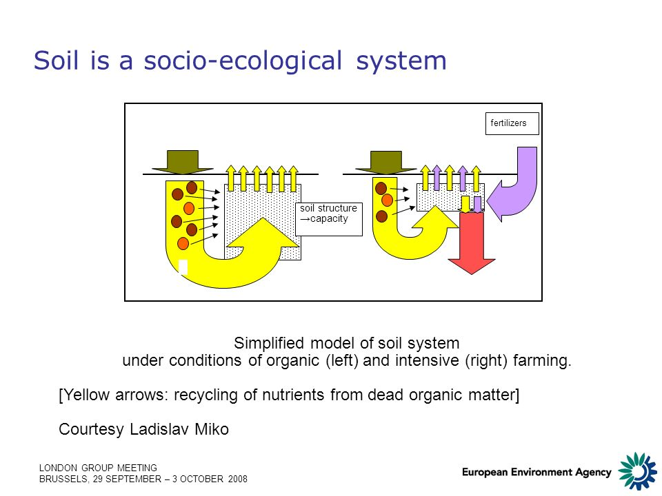 LONDON GROUP MEETING BRUSSELS, 29 SEPTEMBER – 3 OCTOBER 2008 Soil is a socio-ecological system fertilizers soil structure capacity Simplified model of