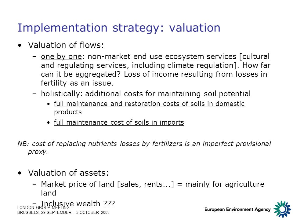 LONDON GROUP MEETING BRUSSELS, 29 SEPTEMBER – 3 OCTOBER 2008 Implementation strategy: valuation Valuation of flows: –one by one: non-market end use ecosystem services [cultural and regulating services, including climate regulation].