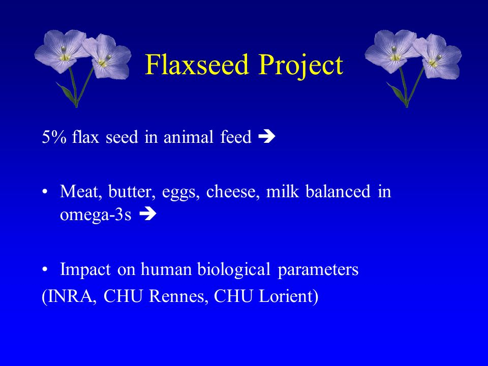 Flaxseed Project 5% flax seed in animal feed Meat, butter, eggs, cheese, milk balanced in omega-3s Impact on human biological parameters (INRA, CHU Re