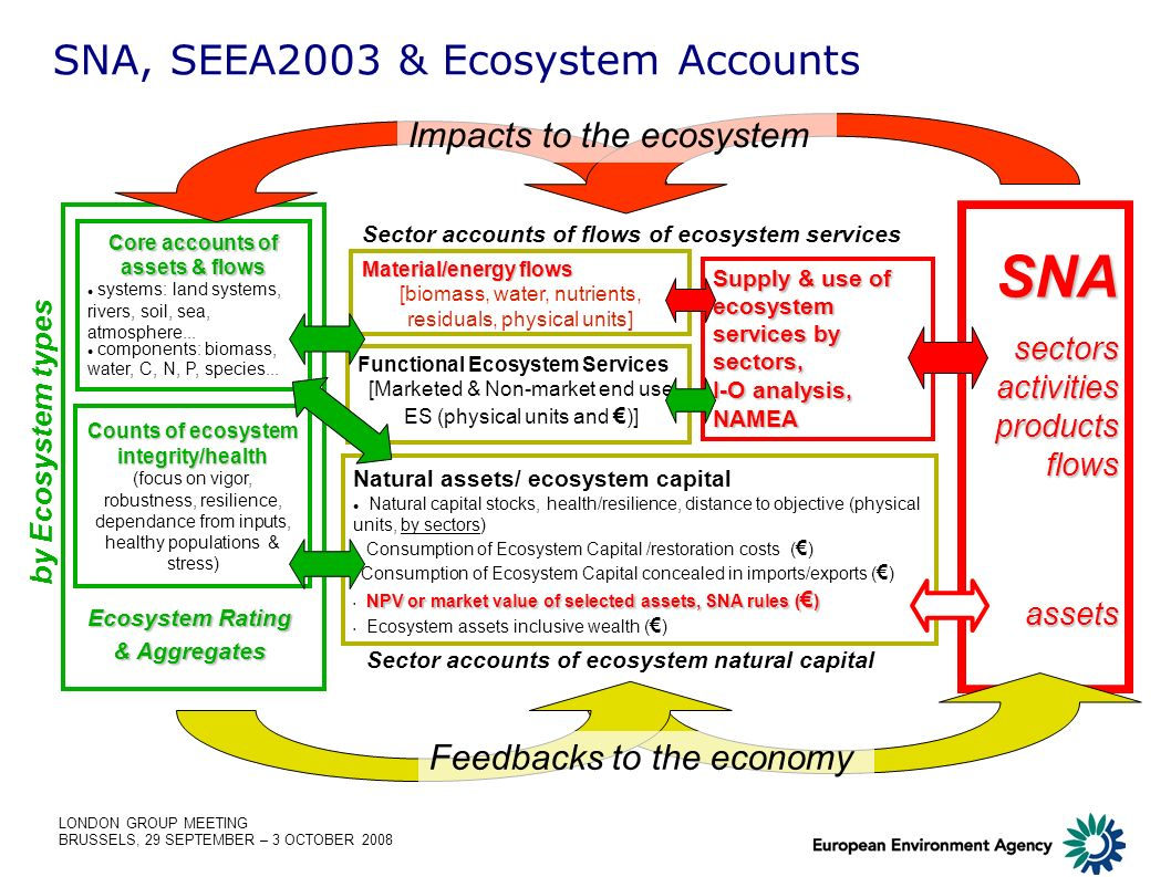 LONDON GROUP MEETING BRUSSELS, 29 SEPTEMBER – 3 OCTOBER 2008 Natural assets/ ecosystem capital Natural capital stocks, health/resilience, distance to objective (physical units, by sectors) Consumption of Ecosystem Capital /restoration costs ( ) Consumption of Ecosystem Capital concealed in imports/exports ( ) NPV or market value of selected assets, SNA rules ( ) Ecosystem assets inclusive wealth ( ) Supply & use of ecosystem services by sectors, I-O analysis, NAMEA Functional Ecosystem Services [Marketed & Non-market end use ES (physical units and )] SNA, SEEA2003 & Ecosystem Accounts Sector accounts of ecosystem natural capital Sector accounts of flows of ecosystem services Counts of ecosystem integrity/health (focus on vigor, robustness, resilience, dependance from inputs, healthy populations & stress) Core accounts of assets & flows systems: land systems, rivers, soil, sea, atmosphere...