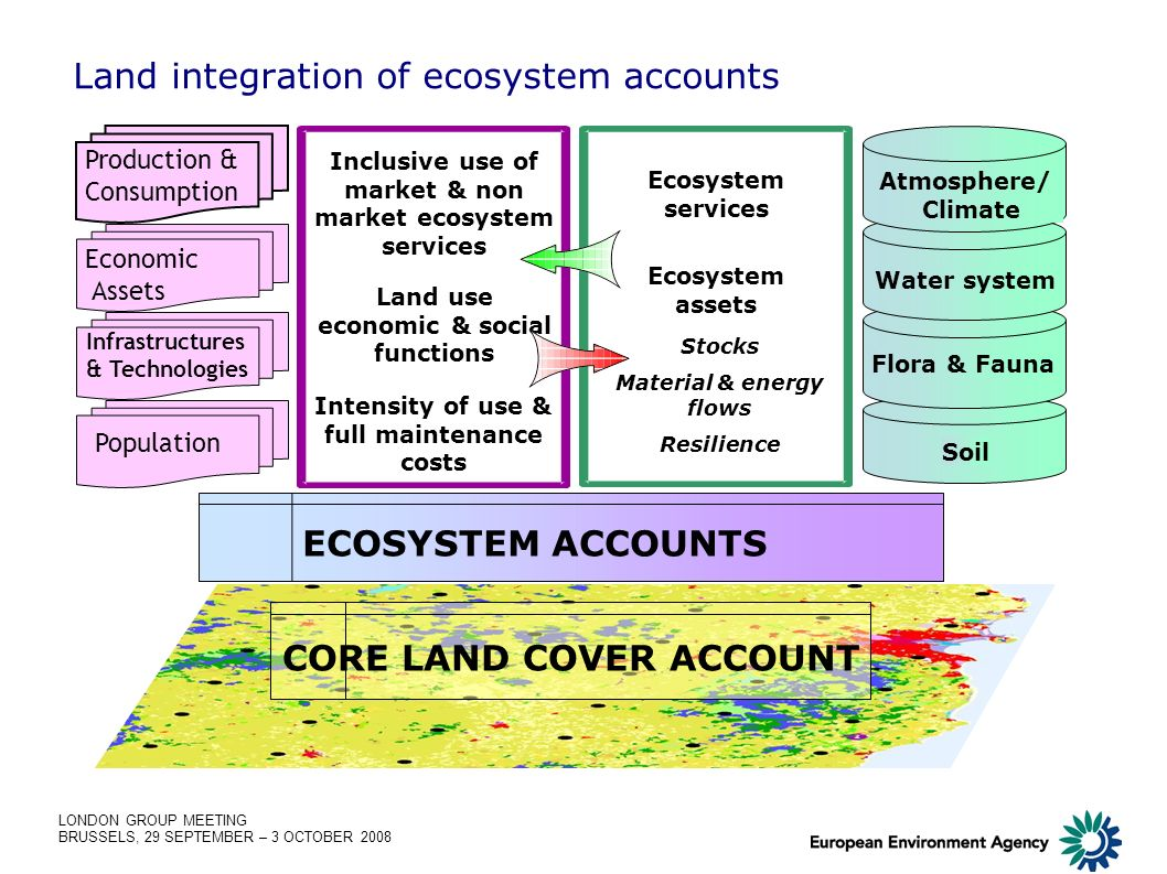 LONDON GROUP MEETING BRUSSELS, 29 SEPTEMBER – 3 OCTOBER 2008 CORE LAND COVER ACCOUNT ECOSYSTEM ACCOUNTS Land integration of ecosystem accounts Soil Fl