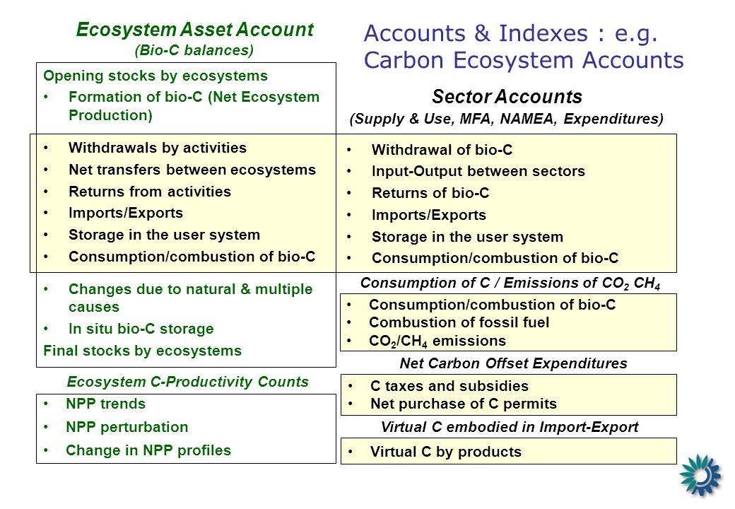 Accounts & Indexes : e.g.