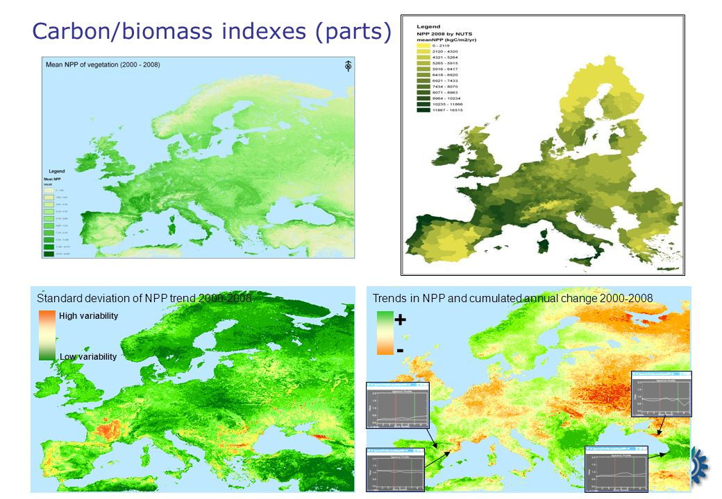 Carbon/biomass indexes (parts) Trends in NPP and cumulated annual change 2000-2008 + - Standard deviation of NPP trend 2000-2008 High variability Low variability