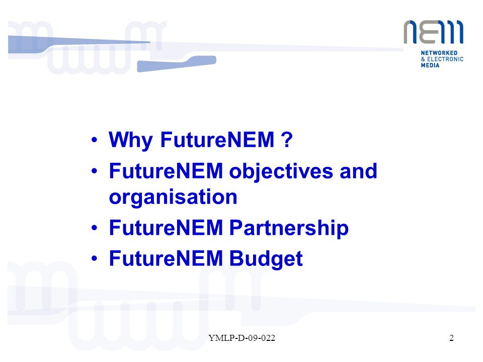 2YMLP-D-09-022 Why FutureNEM ? FutureNEM objectives and organisation FutureNEM Partnership FutureNEM Budget