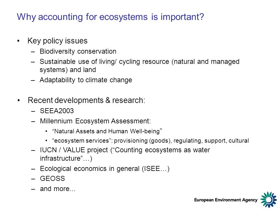 Why accounting for ecosystems is important.