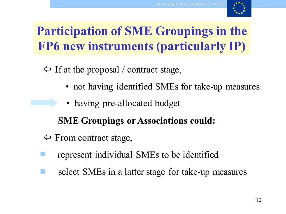 12 SME Groupings or Associations could: having pre-allocated budget select SMEs in a latter stage for take-up measures Participation of SME Groupings in the FP6 new instruments (particularly IP) ï From contract stage, not having identified SMEs for take-up measures ï If at the proposal / contract stage, represent individual SMEs to be identified