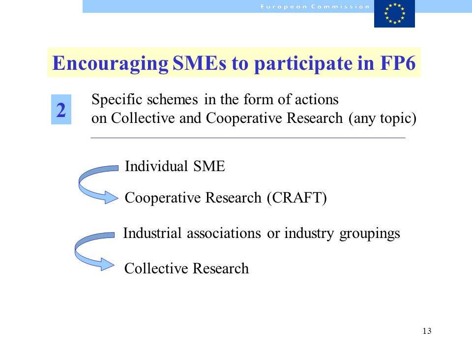 13 Specific schemes in the form of actions on Collective and Cooperative Research (any topic) Cooperative Research (CRAFT) Individual SME Encouraging