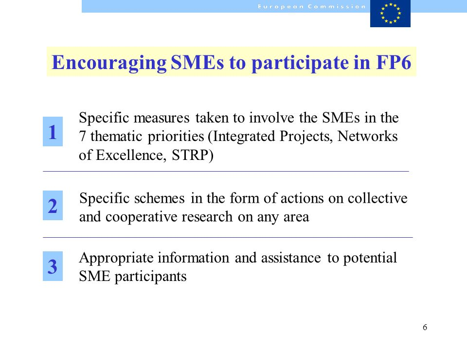 6 Encouraging SMEs to participate in FP6 Appropriate information and assistance to potential SME participants Specific measures taken to involve the S