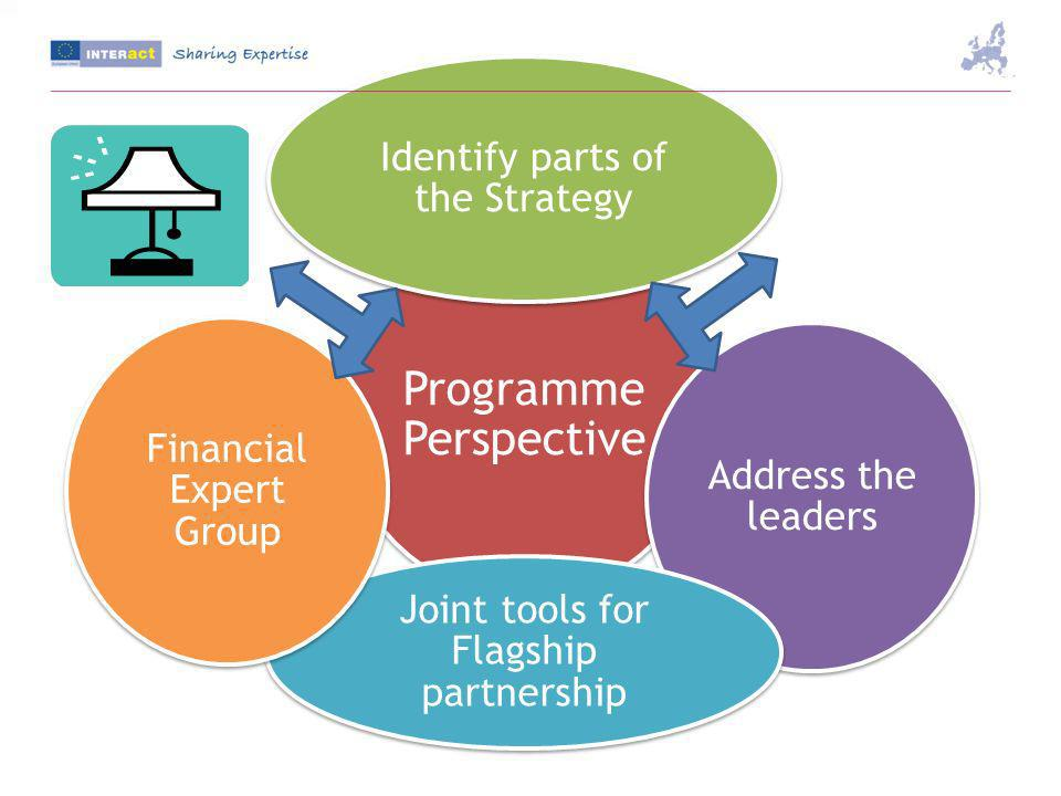 Programme Perspective Identify parts of the Strategy Address the leaders Joint tools for Flagship partnership Financial Expert Group