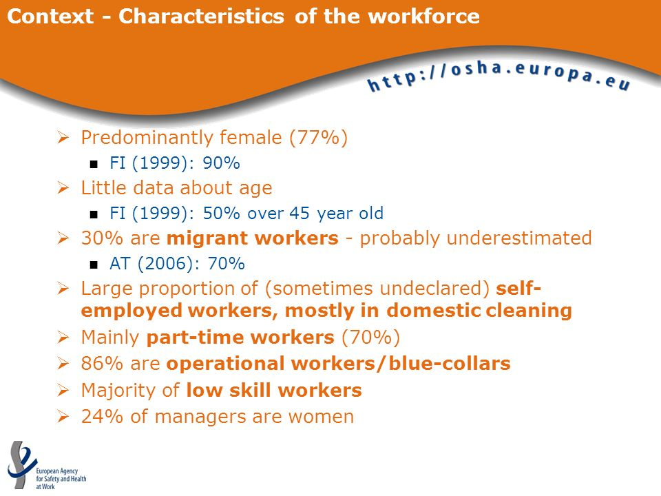 Context - Characteristics of the workforce Predominantly female (77%) FI (1999): 90% Little data about age FI (1999): 50% over 45 year old 30% are mig