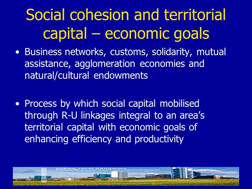 Social cohesion and territorial capital – economic goals Business networks, customs, solidarity, mutual assistance, agglomeration economies and natura