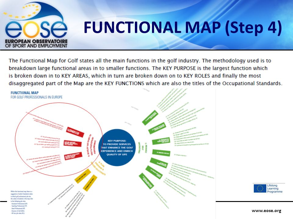 www.eose.orgExpert Group on Education and Training – EQF – Poznan, 26-27 September 2012 FUNCTIONAL MAP (Step 4)