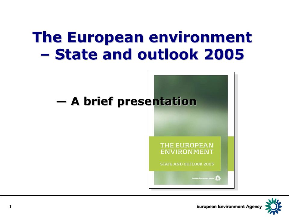 1 The European environment – State and outlook 2005 A brief presentation A brief presentation