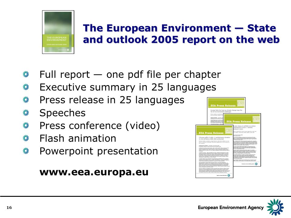 16 The European Environment State and outlook 2005 report on the web Full report one pdf file per chapter Executive summary in 25 languages Press release in 25 languages Speeches Press conference (video) Flash animation Powerpoint presentation www.eea.europa.eu