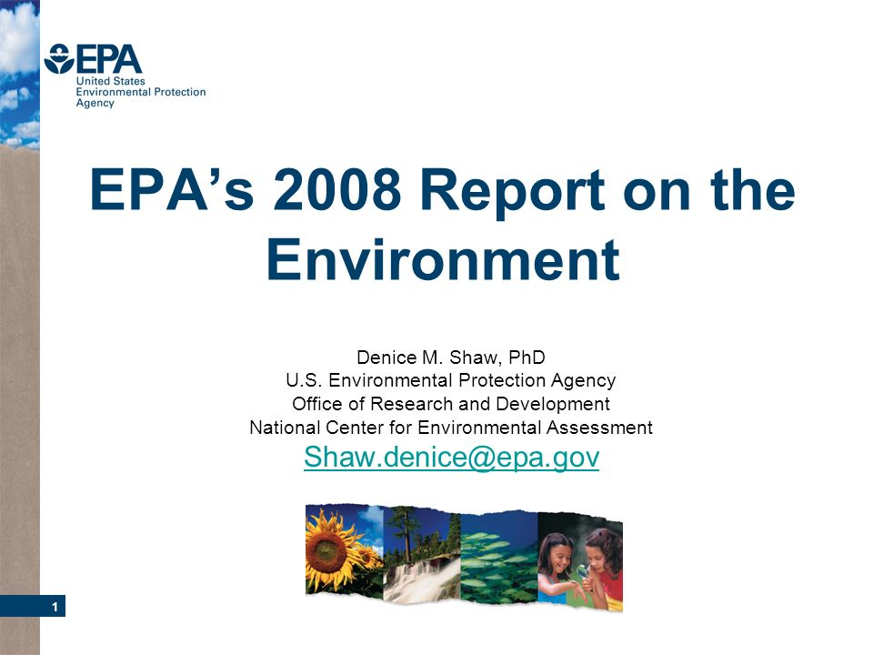 1 EPAs 2008 Report on the Environment Denice M. Shaw, PhD U.S. Environmental Protection Agency Office of Research and Development National Center for
