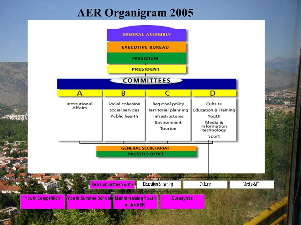 AER Organigram 2005