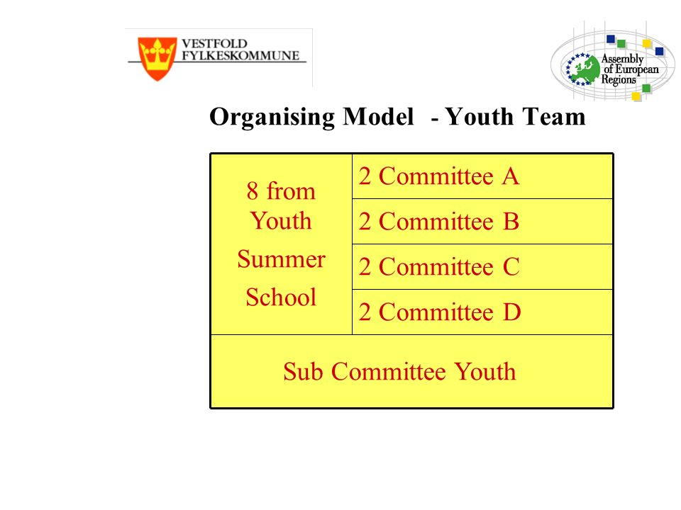 Organising Model - Youth Team 2 Committee D Sub Committee Youth 2 Committee C 2 Committee B 2 Committee A 8 from Youth Summer School
