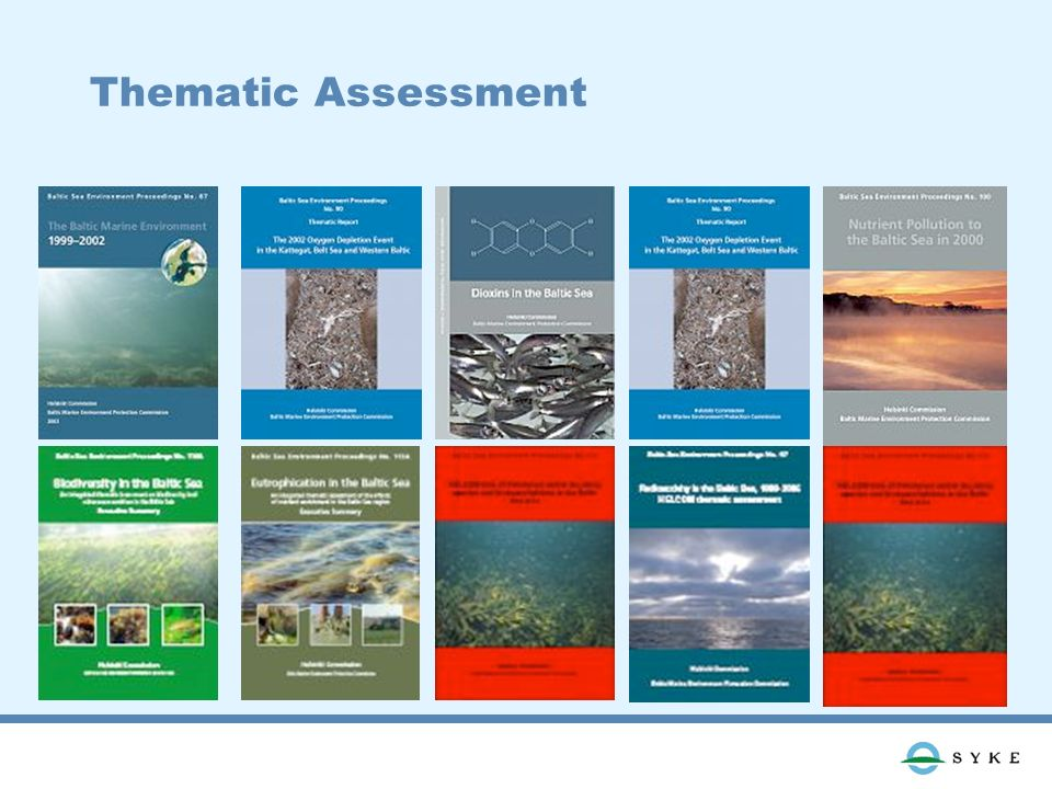 Thematic Assessment