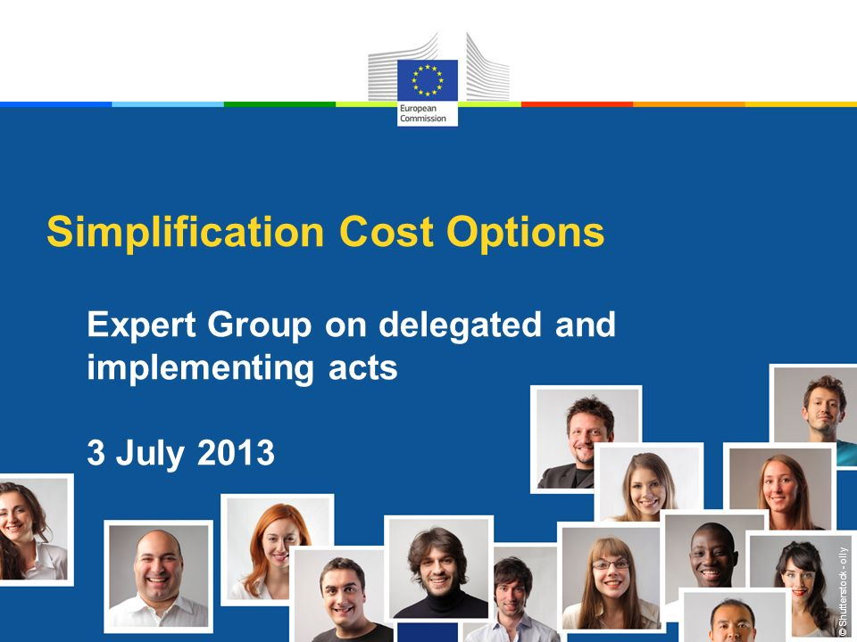 © Shutterstock - olly Simplification Cost Options Expert Group on delegated and implementing acts 3 July 2013
