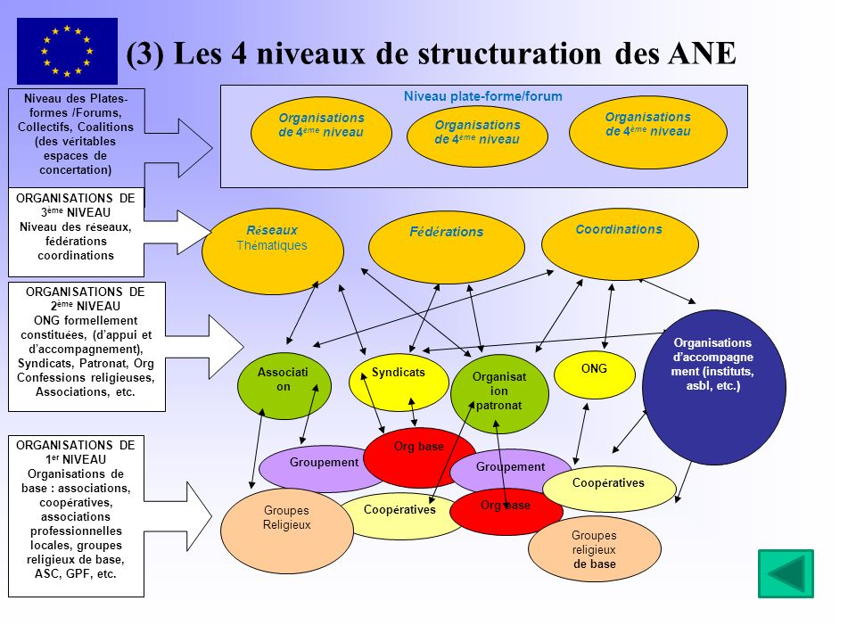 (4) Les trois familles dANE S OCIÉTÉ CIVILE P ATRONAT /S ECTEUR PRIVÉ S YNDICATS / PARTENAIRES ÉCONOMIQUES ET SOCIAUX 4 ème niveau Plateformes ANE Coalitions, collectifsIntersyndicale 3 ème niveau Réseaux, fédérations, unions, etc Organisations faîtièresCentrales 2 ème niveauONG, associationsOrganisations patronalesOrganisations syndicales 1 er niveauOrganisations de baseUnité syndicale de base