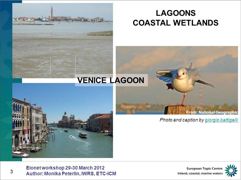 4 COASTAL WATERS Eionet workshop 29-30 March 2012 Author: Monika Peterlin, IWRS, ETC-ICM