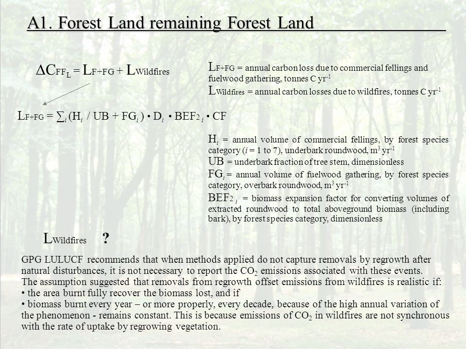 A1. Forest Land remaining Forest Land L F+FG = i (H i / UB + FG i ) D i BEF 2 i CF C FF L = L F+FG + L Wildfires L F+FG = annual carbon loss due to co