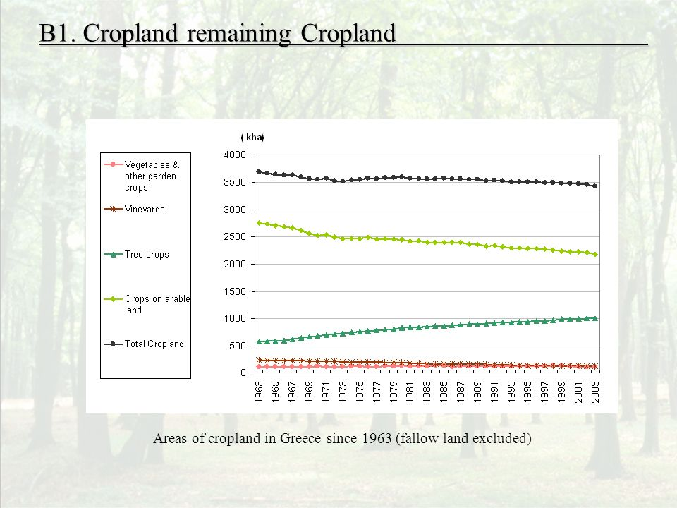 B1. Cropland remaining Cropland Areas of cropland in Greece since 1963 (fallow land excluded)