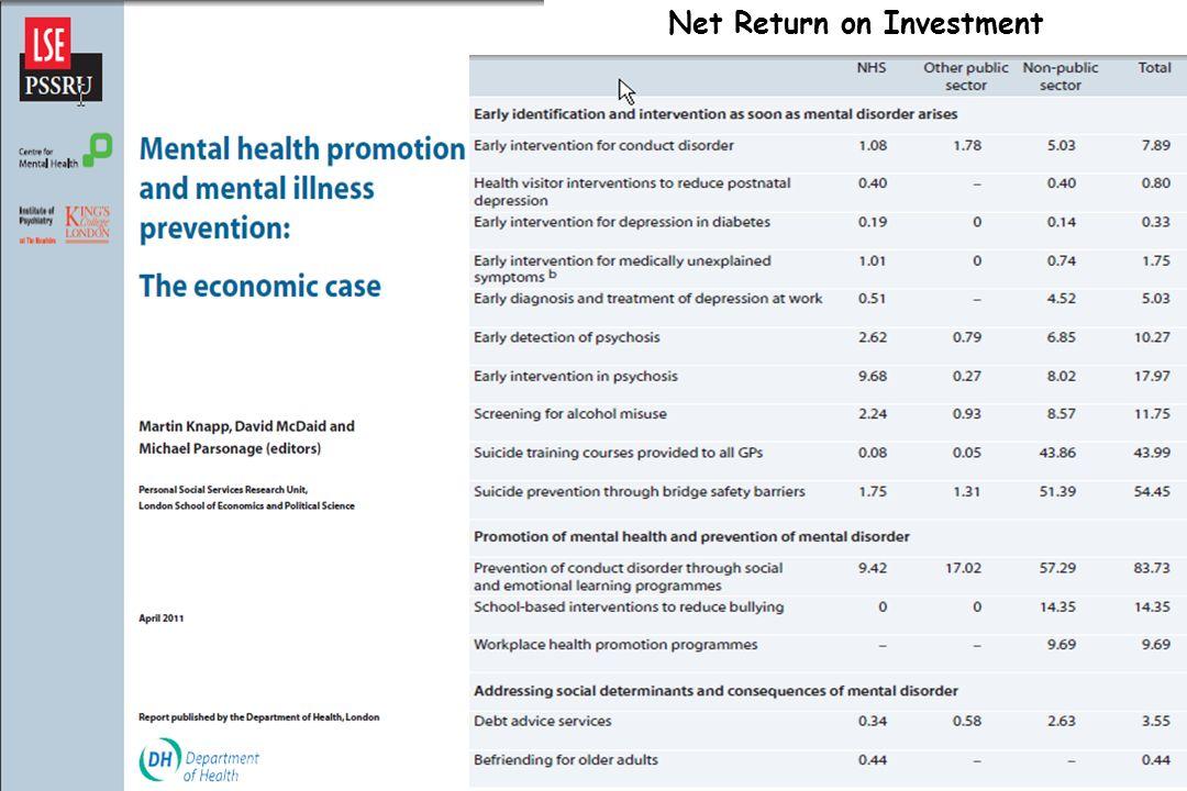 Net Return on Investment