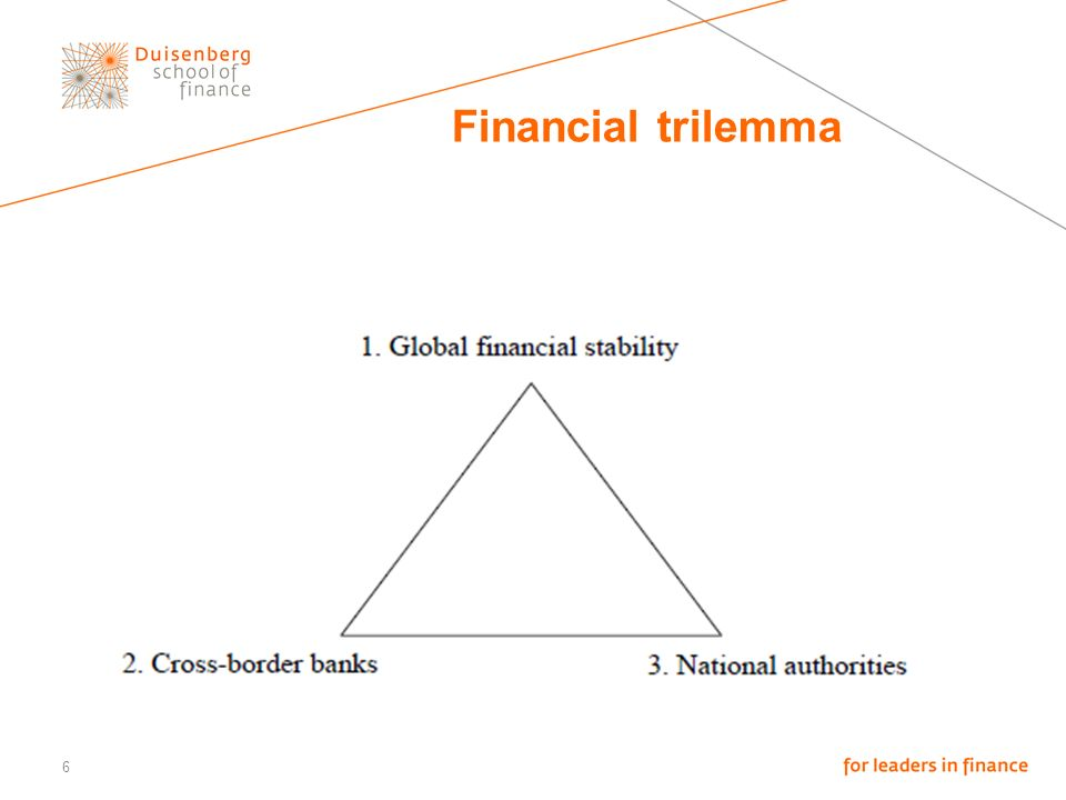 6 Financial trilemma