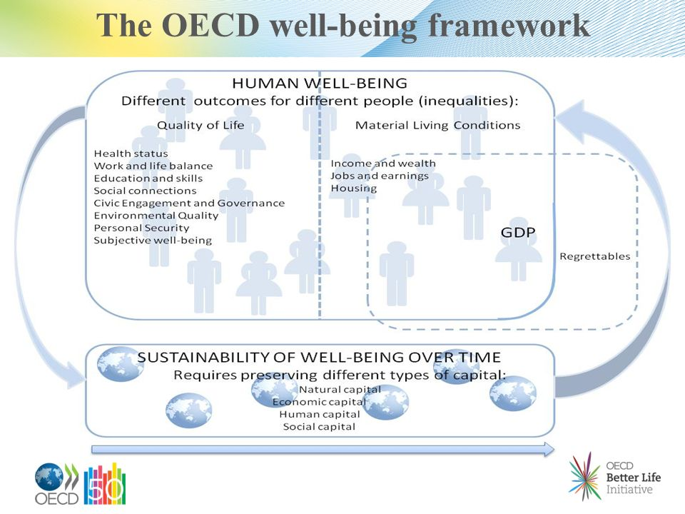 The OECD well-being framework