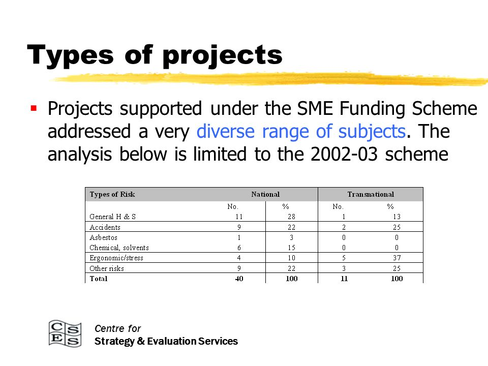Centre for Strategy & Evaluation Services Types of projects Projects supported under the SME Funding Scheme addressed a very diverse range of subjects.